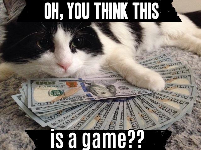 rich-cat-meme
